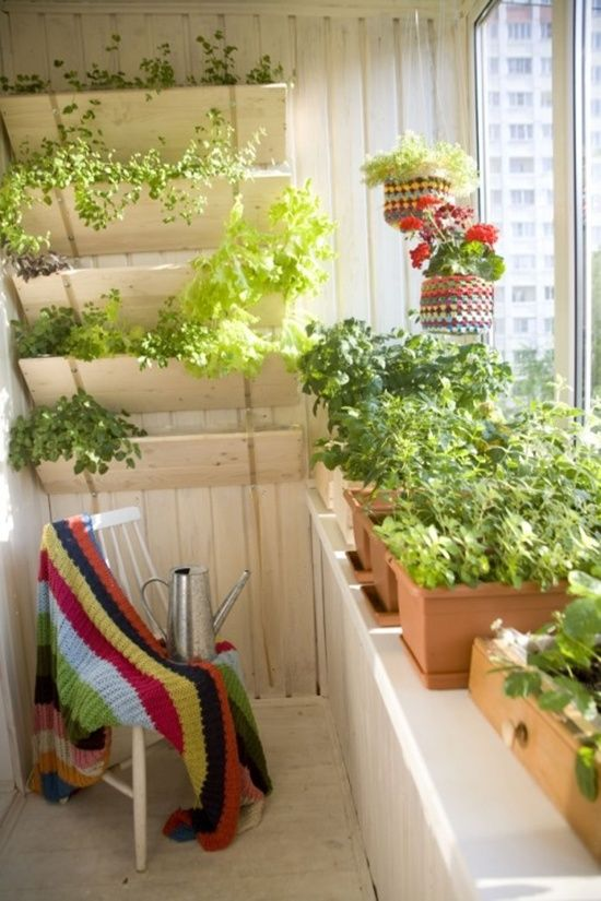What a brilliant way to place the shelves for potted plants in a small terrace. As the plants or herbs grow, they will cascade beautifully and will be easier to keep under control. This is a perfect little garden space for flowers, herbs, and all kinds of plants! Check out this site, it has lots of other beautiful spaces.  small space gardening | narrow terrace | small deck space | apartment gardening | cook's garden