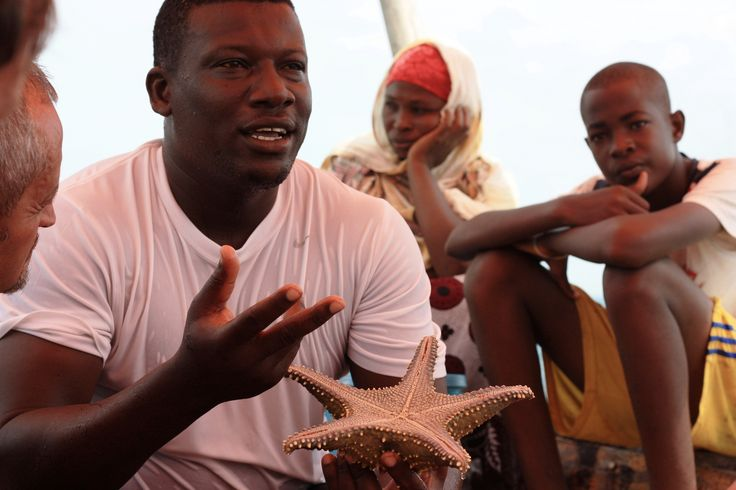 Storie di stelle marine