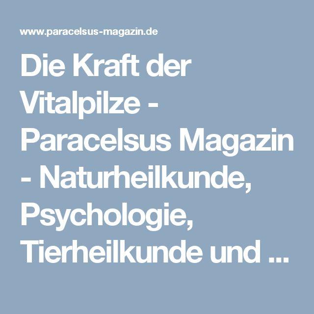 Die Kraft der Vitalpilze - Paracelsus Magazin - Naturheilkunde, Psychologie, Tierheilkunde und Wellness