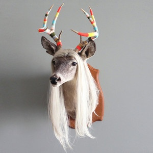 8 Point Taxidermy Shoulder II, $800, now featured on Fab.