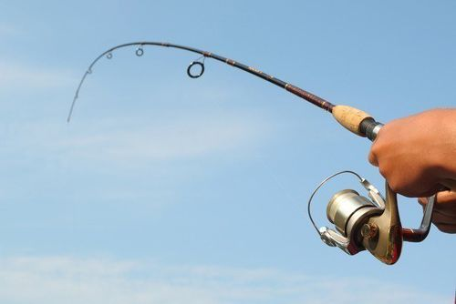 Como pescar a spinning ligero, capturas y diversión garantizas - Todo para la pesca (1)