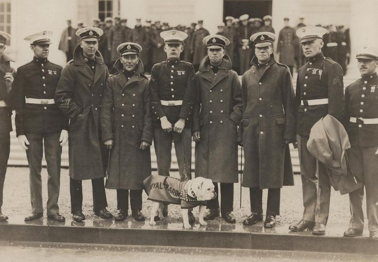 Upon the death of Sgt. Major Jiggs in 1927, the Royal Marines decided to give the United States Marines an English bulldog by the name of Private Pagett. He was presented to the Marine Corps by Lieutenant General L.S.T. Halliday, Royal Marines. Pagett appears here in a Royal Marines cover. From Judi Crowe's Collection.