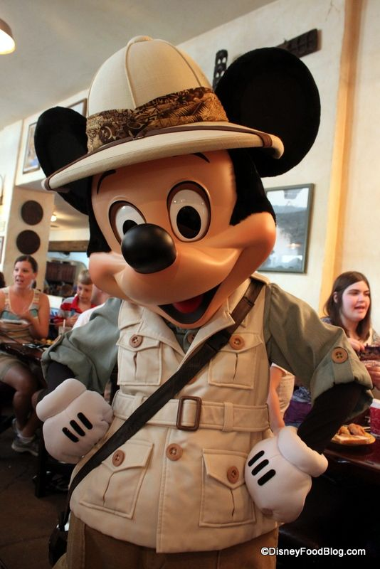 Should You Book a Disney Character Meal on your next Disney trip? We've got some tips on how to decide!