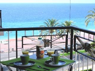 1 Bedroom Condo/Apartment in Nice - 3 reviews and 8 photos