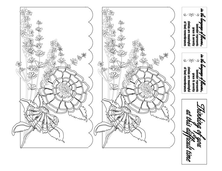 Zinnia's and Lavender Panels for colouring.  Works on 5x7 card.