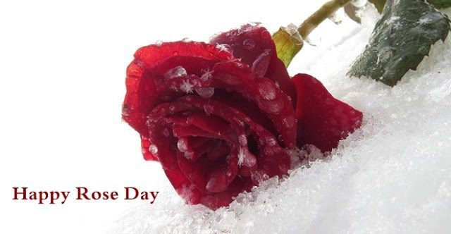 Valentine S Day Happy Valentines Day Ideas For Her Teenagers