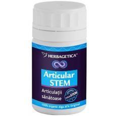 Articular Stem Herbagetica stimulează refacerea ţesuturilor cartilaginoase din articulaţii, creşte mobilitatea articulară, calmează durerea, combate procesele degenerative de la nivelul articulaţiilor.