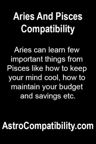 Everything You Need To Know About The Aries In Your Life ...