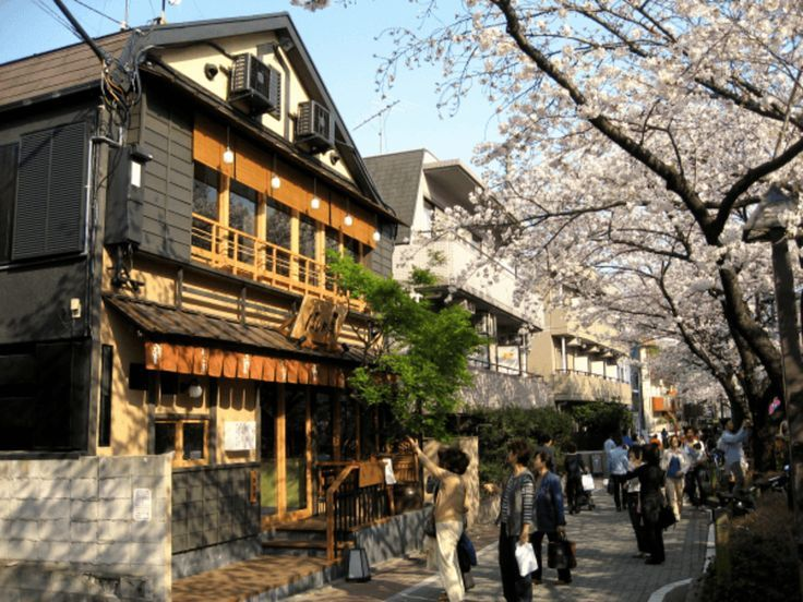 "Tokyo's best ""off the beaten path"" neighborhoods (that most tourists miss): http://boutiquejapan.com/tokyo-neighborhoods/?utm_campaign=coschedule&utm_source=pinterest&utm_medium=Boutique%20Japan%20Travel%20Company%20(Our%20Latest%20Blogs)&utm_content=Week"