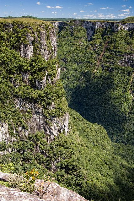 Cânion Fortaleza / Fortaleza Canyon, Cambará do Sul, RS, Brazil by Cassio Dorneles, via Flickr