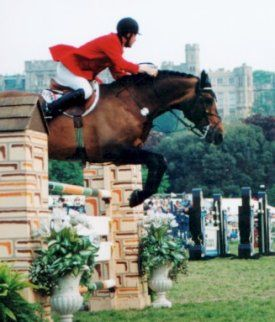 Windsor Horse Show...we here at Geranium Street provide artificial jump brush to many equestrian events! Good News!