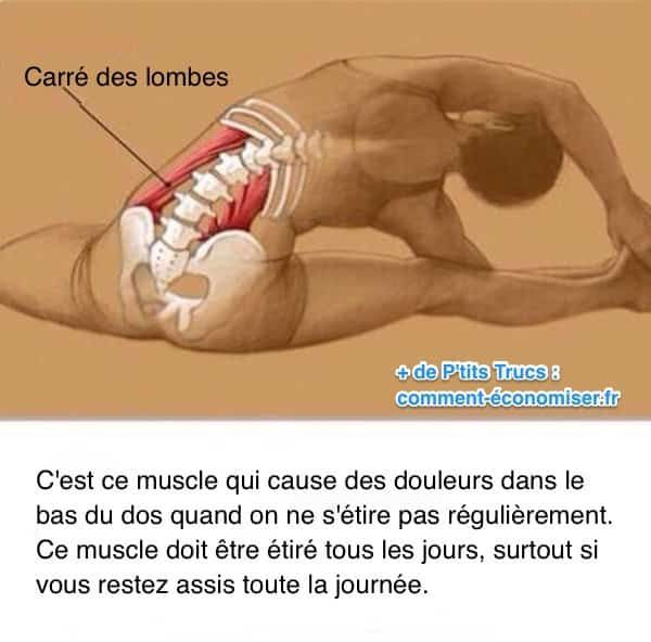 pour éviter le mal en bas du dos étirez tous les jours le muscle appelé carré des lombes