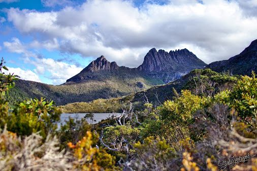 Cradle Mountain, October 2011. Revisiting some old Photo's. Edited in #darktable  using #luminositymasks , watermarked in #gimp .