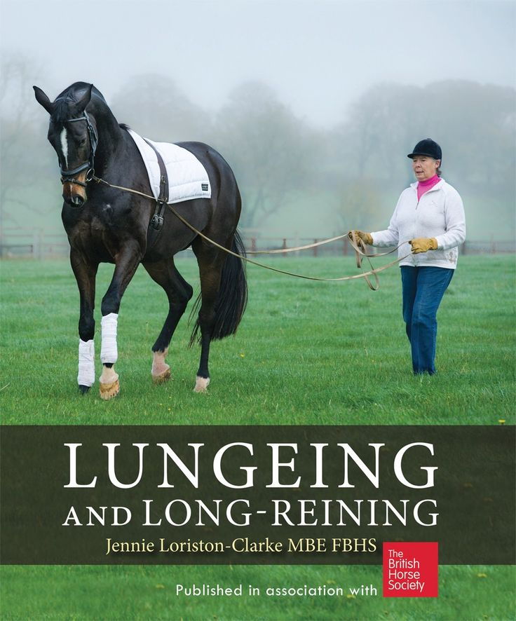 Published in association with the British Horse Society - a step-by-step guide to training, exercising and suppling horses from the ground. - See more at: http://www.quillerpublishing.com/new-releases/lungeing-and-long-reining.html#sthash.Qf0LAYYO.dpuf