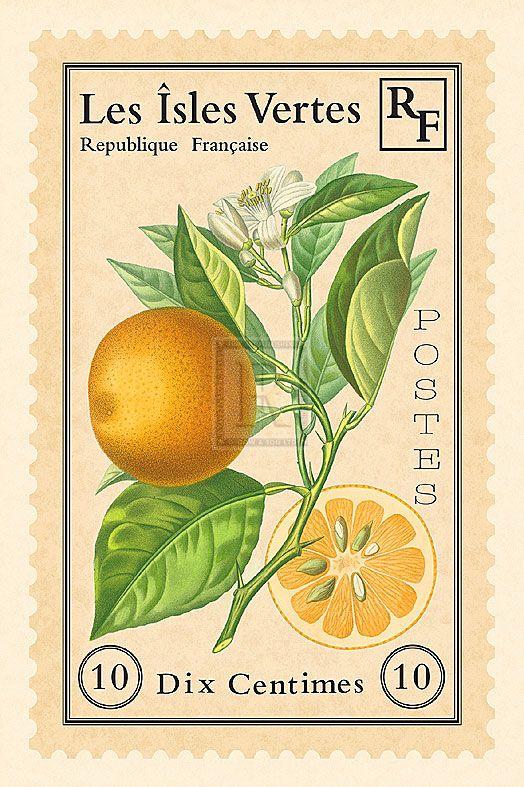 Maria Mendez | French Stamp II | Detail | Rosenstiel's