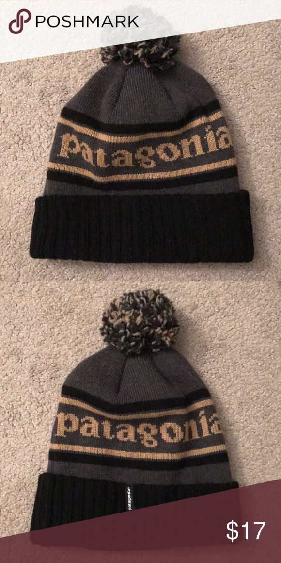 Patagonia Beanie Patagonia is the best. Great quality, AND like-new condition. Patagonia Accessories Hats