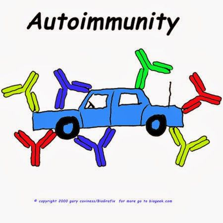 Medical laboratory and biomedical science: Autoimmunity