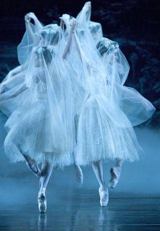 love the willis from giselleNational Ballet, Cream Cheese, Gisele Ballet, Random Dancers, Beautiful, David Cooper, Canada Photos, Giselle Ballet, Dance 3