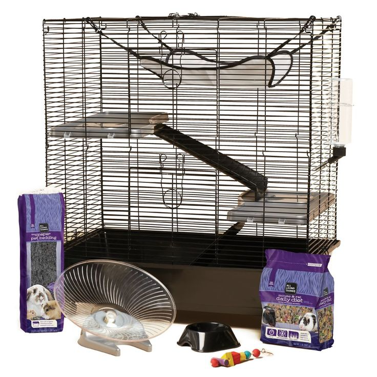 All Living Things® Rat Starter Kit (With images) Small