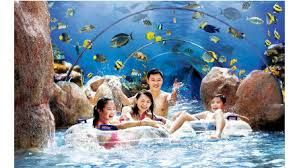 Marine Life Park - The biggest aquarium in the world, make unforgetable experience!  http://www.wisatasingapura.web.id/2013/10/14/marine-life-park/