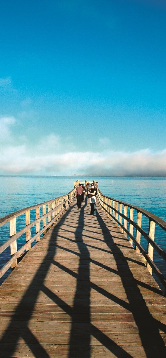 NZ - Hokianga Jetty