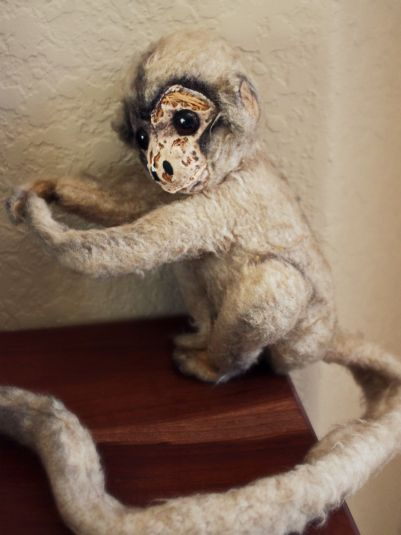 Funny monkey run