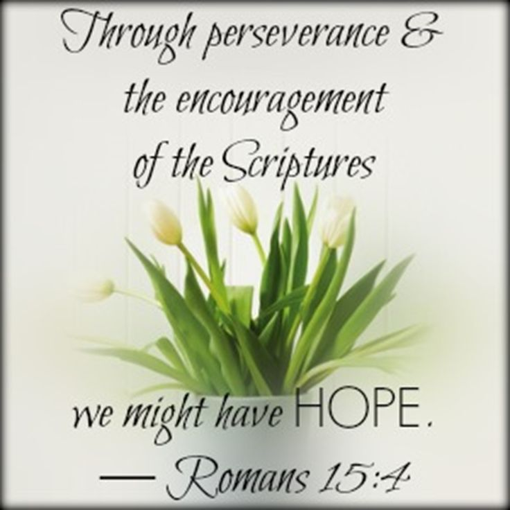 For whatever was written in earlier times was written for our instruction, so that through perseverance and the encouragement of the Scriptures we might have hope. Description from faithgateway.com. I searched for this on bing.com/images