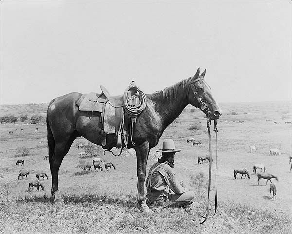 Old West | Old West Cowboy & Horses Bonham Texas 1910 Photo Print for Sale