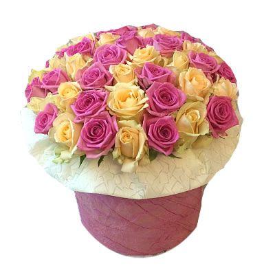 """51 роза сорта """"Талея"""" и """"Аква"""" в коробке размером 20*20"""