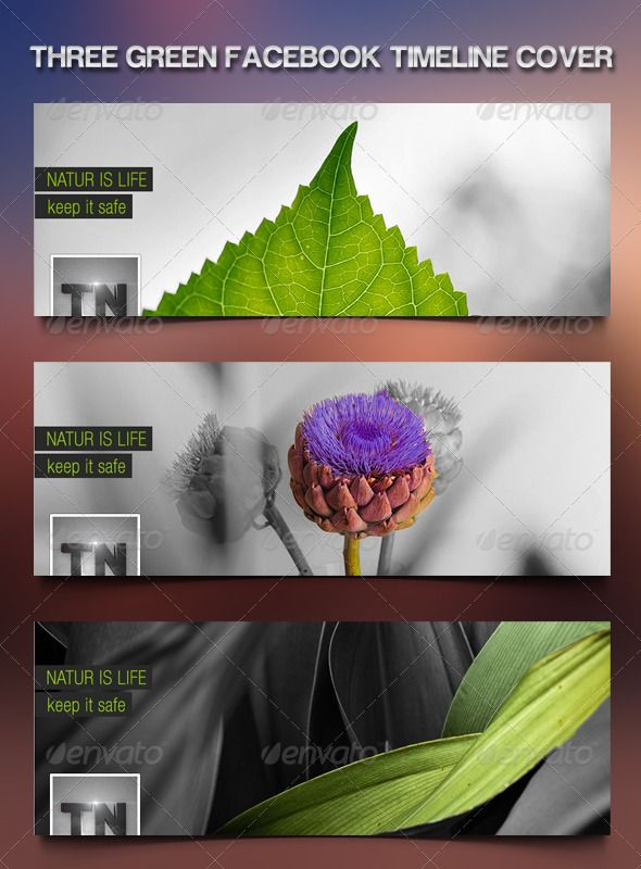 Nice Nature Green Facebook Timeline .  #GraphicRiver         - 850px x 315px - Fully Customizable - Fully Layered Adobe Photoshop .PSD files  	 font used is a premium font called Helvetica but you can use any font you want ( Arial work well ) .     Created: 22August12 GraphicsFilesIncluded: PhotoshopPSD Layered: Yes MinimumAdobeCSVersion: CS3 PixelDimensions: 850x315 Tags: cover #facebook #hight #nature #photoshop #resulution #timeline
