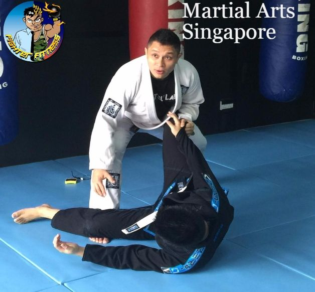 Martial Arts is one of the best skills for the fitness of your body mentally and physically. The fighter fitness company in Singapore gives you training under Professional Fighter who still fights in various tournaments like one championship, UFC and others. So grab you opportunity to get most out of them in Martial Arts Singapore For More Details Please Visit: - http://www.fighterfitness.sg/martial-arts