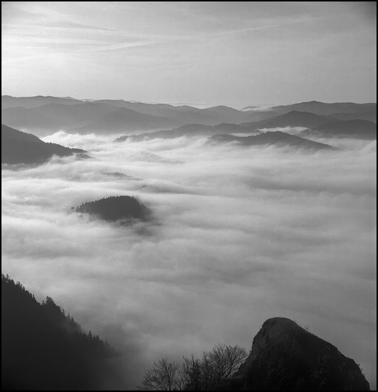 #Pieniny mountains #start66
