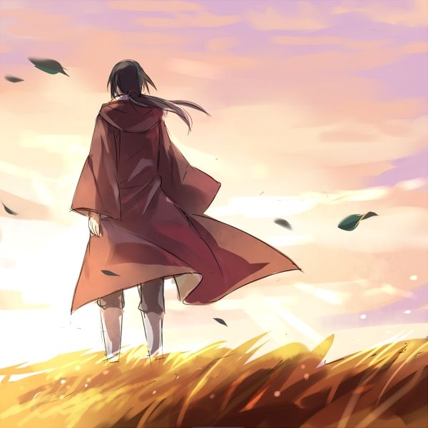 25 Best Sasuke Uchiha Images On Pinterest: 1084 Best Images About Itachi And Sasuke On Pinterest
