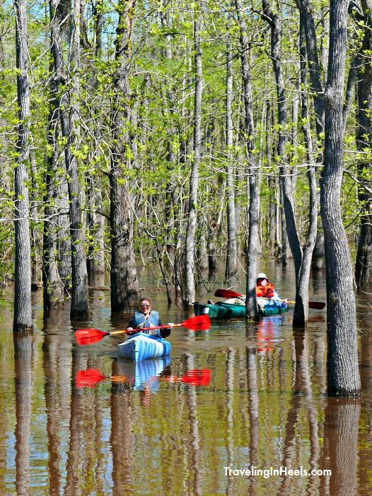 """Known as the """"Last Wild River in East Texas,"""" paddling the Neches River is worth the trip to Beaumont Texas."""