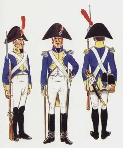 España- Reg. Hibernia irlandes 1808