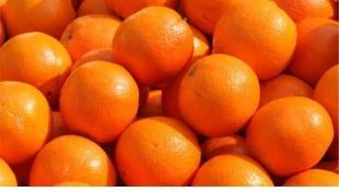 Le mille proprietà dell'arancia