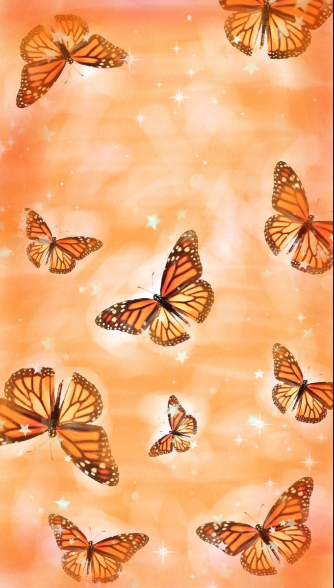 This wallpaper is about peach aesthetic wallpaper 4k, download hd wallpaper for desktop, or mobile in best quality (4k). Orange aesthetic wallpaper | Butterfly wallpaper, Cute ...