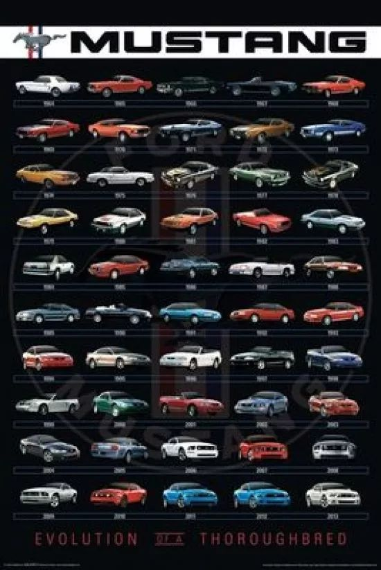 #poster (61 x 91 cm) ford - #mustang evolution #rocker #mercadolibre