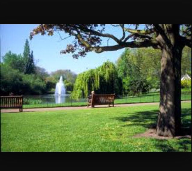 Physical environment: having access to parks