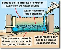 Best 25 Self Watering Pots Ideas On Pinterest Plastic Water Containers Self Watering Bottle