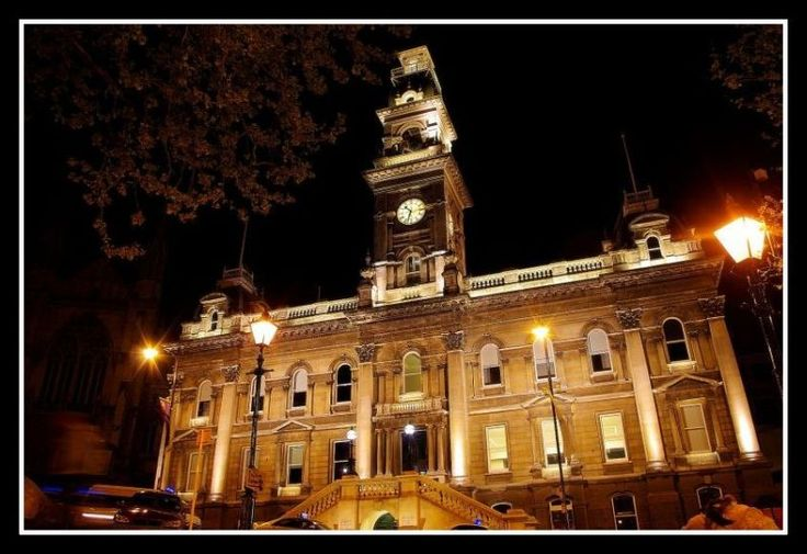City Council of Dunedin through the eyes of eugenefu