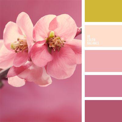 2015, color flor de guinda, color verde lechuga suave, combinación de matices rosado y verde lechuga, elección del color, elección del color para una boda, paleta de colores suaves, rosado cálido, rosado claro, rosado oscuro, rosado y verde lechuga, tonos rosados, verde lechuga y rosado.