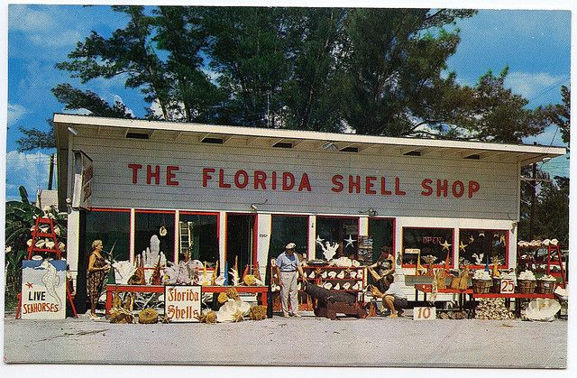 The Florida Shell Shop  9901 Gulf Blvd, Treasure Island, Florida