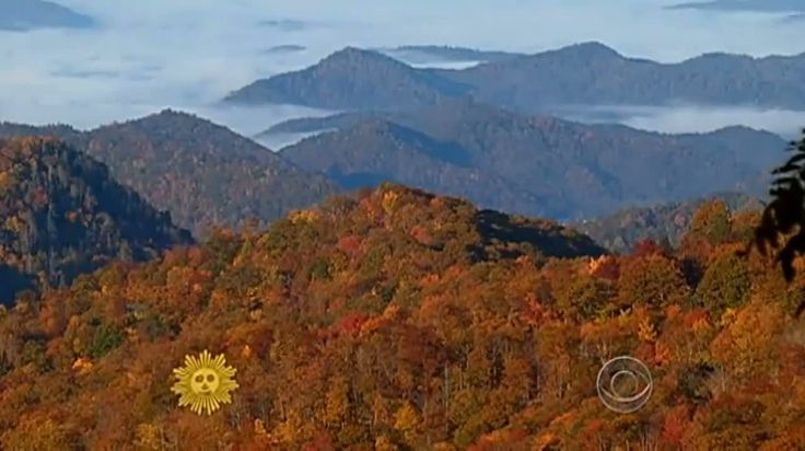 Tennessee Autumn #luxurytravel #cruise #travel #whereintheworld  #southamerica #travelwriter #writer