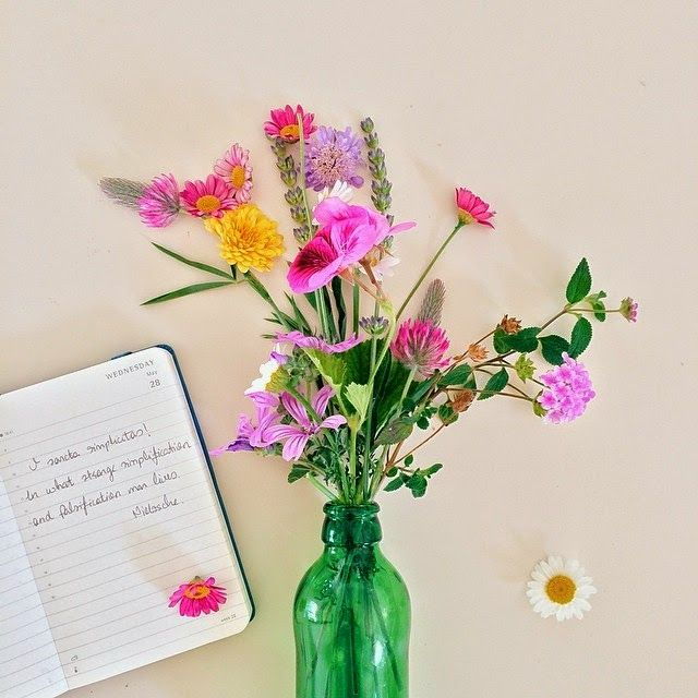 moleskine zynp diary