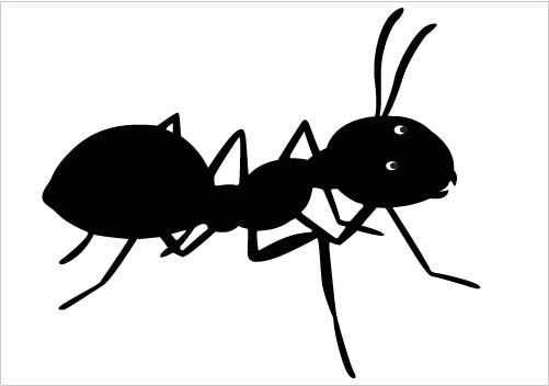 Black Ants Clipart Black Ant Clipart Ant Vector
