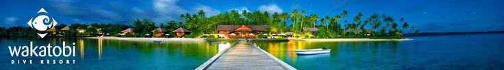 Wakatobi Dive Resort - Southeast Sulawesi Indonesia - Home Page