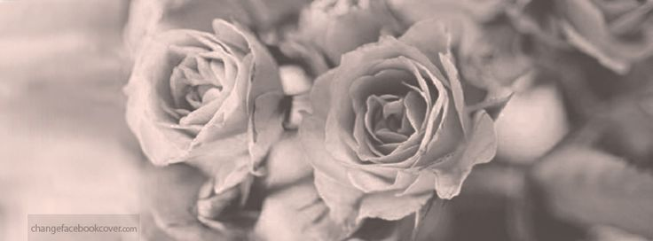 facebook-cover-vintage-roses-photo-background-flowers-black-and-white.jpg 851 × 315 pixels