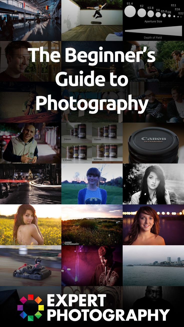 The Beginner's Guide to Photography » Expert Photography