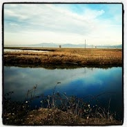This was taken at Garry Point in Steveston (located in Richmond, BC). I grew up very close to here and for a while I lived right down the street. As a teenager, this was my quiet place to go when I needed a little down time.
